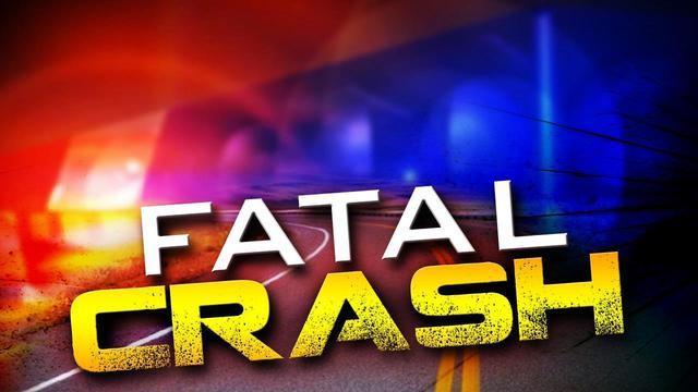 Coroner releases names of 3 killed in Colleton County wreck