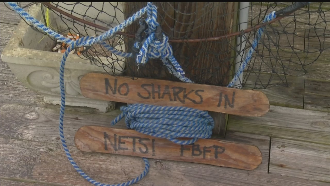 Folly Beach discusses ban on shark fishing around pier