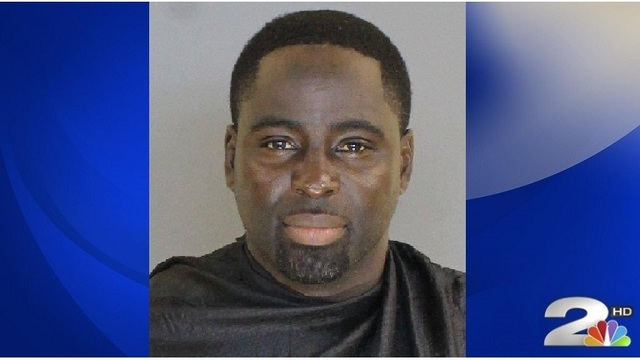 SC man arrested after pit bulls found with ears cut off