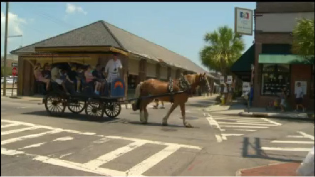 Horse slips and falls pulling carriage in downtown Charleston