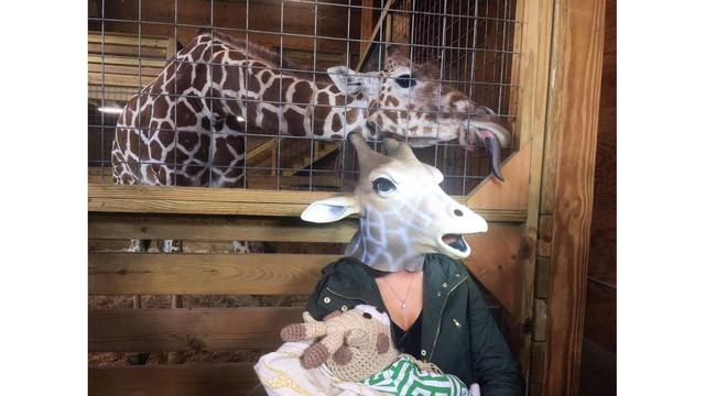 'Giraffe mom,' newborn visit April the giraffe and baby