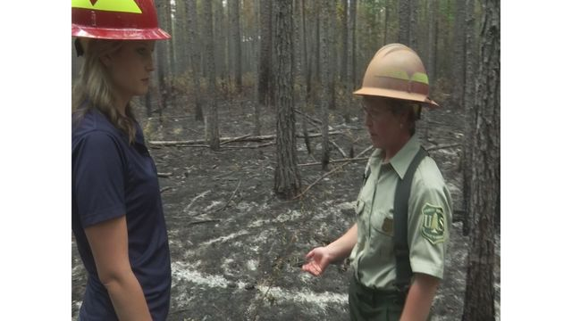 US Forestry Service explains reasoning behind prescribed burns in Francis Marion National Forest