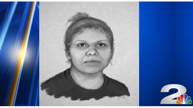 Police search for woman after possible birth