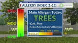 Pollen Count for Tuesday, April 9th