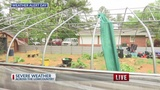 Severe storm wreaks havoc on Knightsville greenhouse